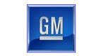 Business consulting and business management - General Motors |  Move Your Mind