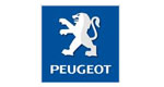 Business consulting and business management  - Peugeot Italia I Move Your Mind